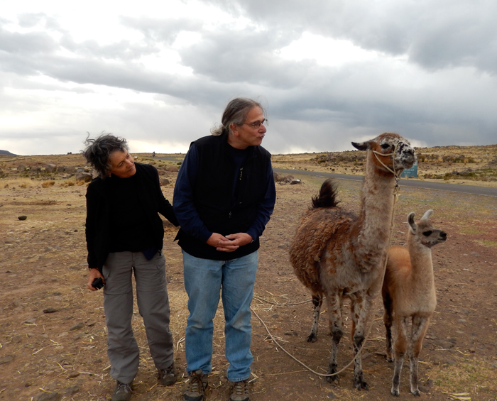 After visiting Sillustani (near Lake Titicaca), our tour group stopped for a photo op.